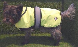 Smart K9 Boutique - Hi-Vis Dog Coats