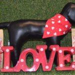 Smart K9 Boutique - Valentine's Day Treats