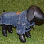 Smart K9 Boutique - Denim Jacket