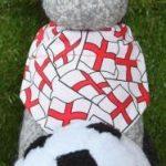 Smart K9 Boutique - World Cup England Dog Bandana and Football 2018