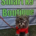 Smart K9 Boutique - Saltaire Produce Market Apr 16