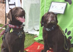 Smart K9 Boutique - Pickering Game & Country Fair May 2017
